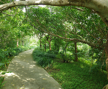 貴方だけの【沖縄旅行】をプランニングします ご希望に応じて、航空券・ホテルの予約、旅行手配もできます。