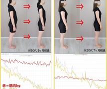 """痩せた状態を維持する前提で1ヶ月サポートします """"やる気""""と""""気合い""""は[消耗品]なのでほとんど使いません"""