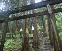 貴方の産土神社を鑑定します 貴方の内に秘めて生き続けてる歴史を見つけてみませんか!?