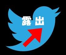 """Twitterのインプレッション数を向上させます 独自の秘法を駆使して""""人気のツイート""""を量産致します♪"""