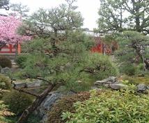 現役バスガイドが京都観光のお手伝いをします 1日の行程考えます!歴史や豆知識もお任せ下さい♪