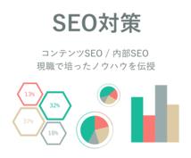SEOコンサル|現職で培ったノウハウを伝授ます あなたのサイトのSEO、アクセスアップのお手伝いをします