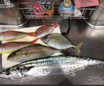 あらゆる魚の美味しい調理法を教えます 伊豆で魚屋をやっています!魚の調理法を教えます!