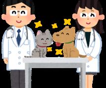 動物病院の経営や運営に関するアドバイスをいたします 看護師さんなど病院スタッフの方もお気軽にご相談ください