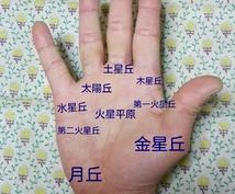 手相でお悩み解決します 手相鑑定に関心がある方にお勧めです。