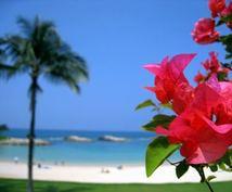 ハワイで会社を設立する方法を教えます 海外と取引を始めたい人、ハワイに会社を持ちたい人