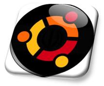 自前Linuxサーバー構築・保守をサポートします 必要なLinuxコマンドやシェルの使い方もお教えします