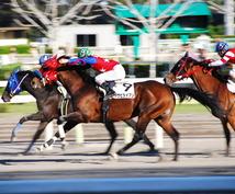 中央競馬の購入レース、買い目を配信します 【高的中率】稼げる馬券配信します