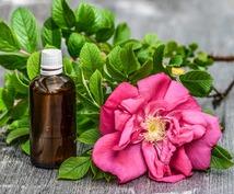 今のあなたにぴったりのアロマオイルを選びます 香水、アロマ選びに・・・あなたの今の状態に合った香りって?