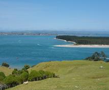 ニュージーランドへ語学留学、大学留学お考えの方、相談に乗ります。13年在住。