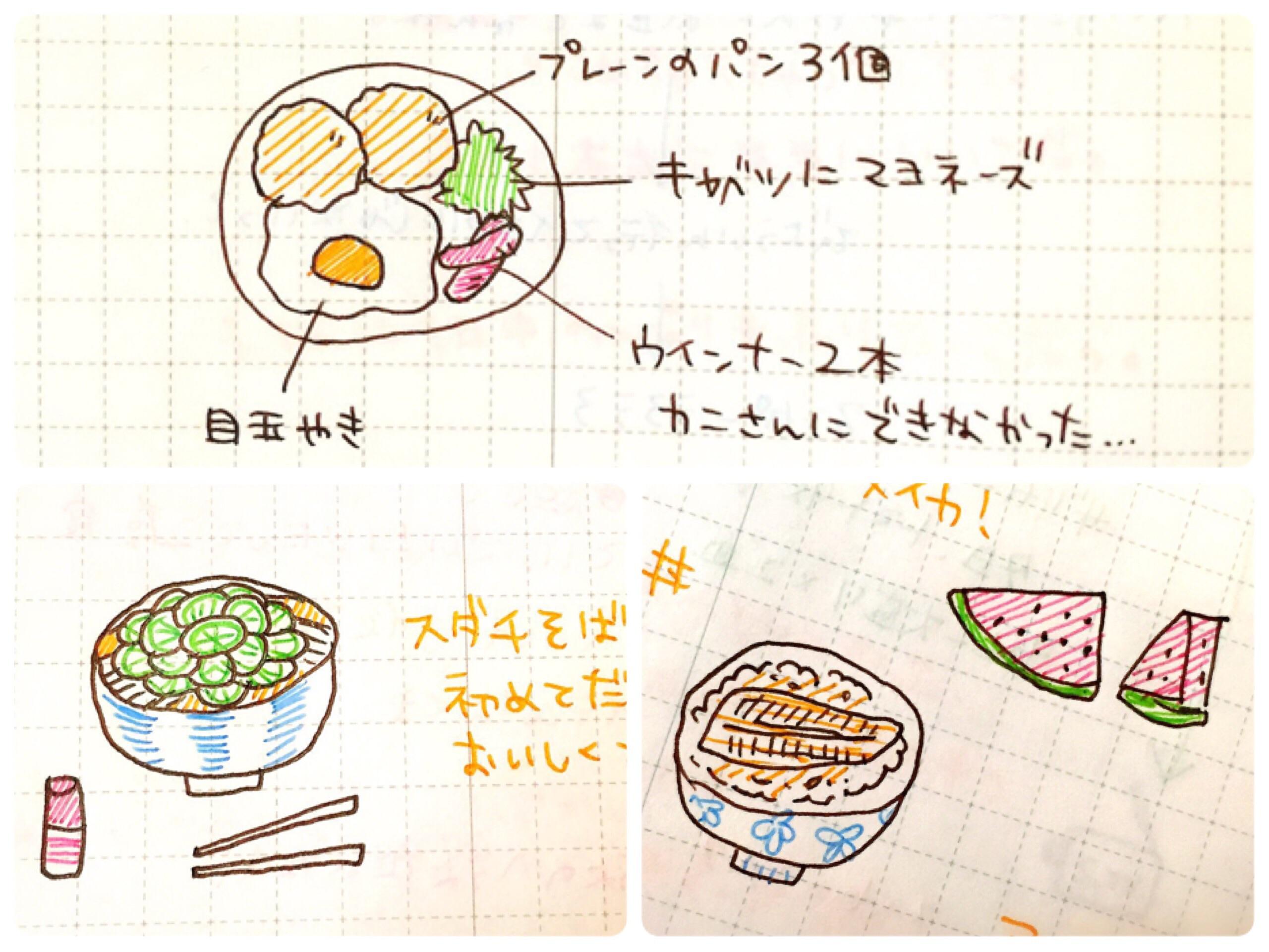 2日分で500円!】5色ボールペンで日記を書きます♪ イラストのみも